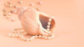 Seashell con le perle fotografie stock