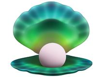 Seashell con una pera Fotografia Stock
