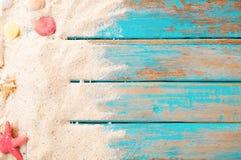 Seashell de feston sur le rose photographie stock libre de droits