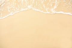 Seashell de feston sur le rose image libre de droits