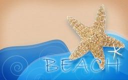 Seashell de la concha de peregrino en color de rosa Imagen de archivo libre de regalías