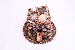 Seashell Decorations Stock Image