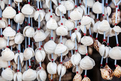 Seashell decorations Royalty Free Stock Photos