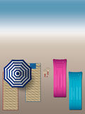 Seashell del pettine sul colore rosa illustrazione vettoriale