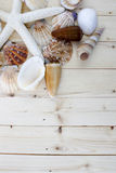 Seashell. Different seashells with space to write your message  spilled on white background Royalty Free Stock Photo