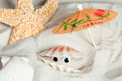 Seashell divertente Fotografia Stock