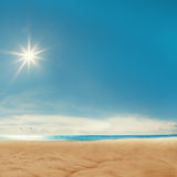 Seashell do Scallop na cor-de-rosa Céu azul, o mar, o sol que brilha Recurso dos termas Imagens de Stock