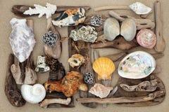 Seashell Driftwood and Rock Abstract. Seashell, driftwood and rock abstract background on sand Royalty Free Stock Photography