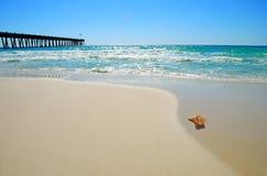 Seashell durch Pier stockfotografie