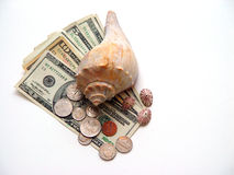 Seashell e dinheiro americano imagens de stock