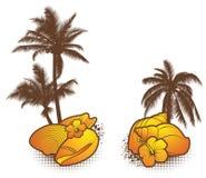 Seashell-Elemente, orange Stockfotos