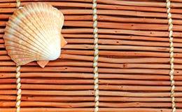 Seashell en la estera de madera fotografía de archivo libre de regalías
