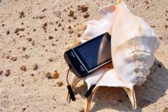 Seashell et téléphone Photo libre de droits
