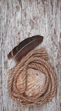 Seashell, feather and rope on the old wooden background Stock Images