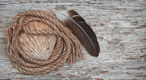 Seashell, feather and rope on the old wooden background Stock Photo