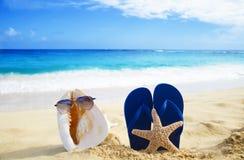 Seashell and flip flop on sandy beach. Seashell with sunglasses and flip flop wiyh starfish on sandy beach in Hawaii, Kauai Royalty Free Stock Images