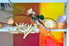 Seashell and flowers background Stock Photos