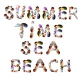 Seashell font for summer holiday. Summer, time, sea, beach words made of various seashells vector illustration