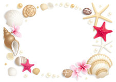Seashell frame Royalty Free Stock Photos