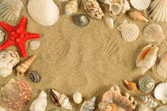 Seashell frame Royalty Free Stock Photography