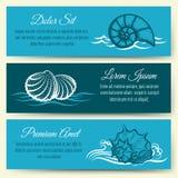 Seashell frame banners Stock Photography
