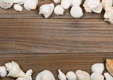 Seashell frame on brown wooden boards Royalty Free Stock Photography