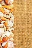 Seashell frame on sack Stock Photography