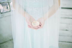 Seashell in the hands of the bride Stock Images