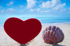 Seashell with heart shape by the ocean Royalty Free Stock Photos