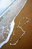 Seashell hearts Stock Image
