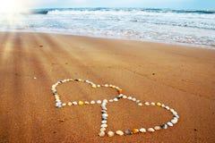 Seashell hearts Stock Images