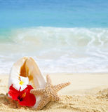 Seashell i rozgwiazda z tropikalnymi kwiatami na piaskowatej plaży Fotografia Stock