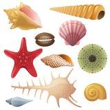 Seashell Icons Stock Image