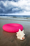 Seashell and inflatable tube Stock Photography