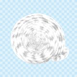 Seashell isolated on the transparent background vector illustration