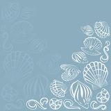 Seashell karta Obrazy Stock