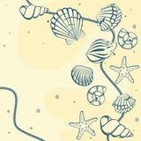Seashell karta Fotografia Stock