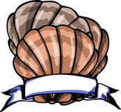 Seashell label Royalty Free Stock Photo