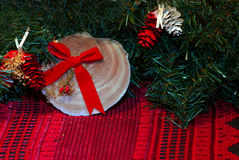 Seashell and leaves as Chritmas Decorations Royalty Free Stock Images