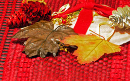 Seashell and leaves as Chritmas Decorations Stock Image
