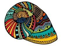 Seashell line art vector illustration