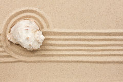 Seashell  lying on the sand Royalty Free Stock Photography