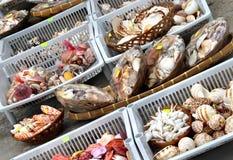 Seashell market Royalty Free Stock Photo