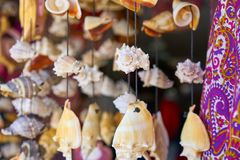 seashell mobile wind chime handcraft Stock Images