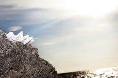 Seashell na rocha no céu do por do sol fotografia de stock royalty free