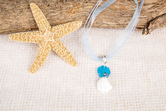 Seashell Necklace Stock Photography