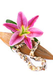 Seashell necklace and lily flower Royalty Free Stock Photo