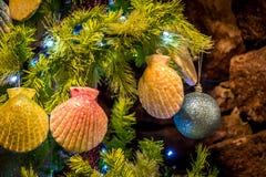 Seashell ornaments on Christmas Tree Stock Photos