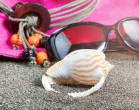 Seashell with other beach accessories in background Royalty Free Stock Photos