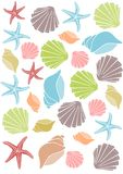 Seashell pattern Royalty Free Stock Image